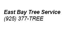 05_east-bay-tree